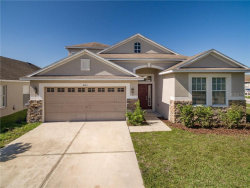 Photo of 4201 Morning Breeze Court, TAMPA, FL 33619 (MLS # T3209952)