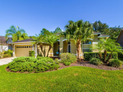 Photo of 10146 Whisper Pointe Drive, TAMPA, FL 33647 (MLS # T3210057)