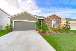 Photo of 12025 Grand Kempston Drive, GIBSONTON, FL 33534 (MLS # T3210507)