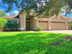 Photo of 10559 San Travaso Drive, TAMPA, FL 33647 (MLS # T3210541)