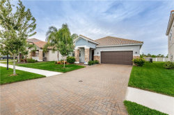 Photo of 13142 Green Violet Drive, RIVERVIEW, FL 33579 (MLS # T3210639)