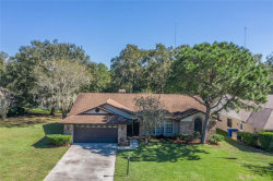 Photo of 10124 Sedgebrook Drive, RIVERVIEW, FL 33569 (MLS # T3211791)