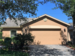 Photo of 156 Grand Canal Drive, POINCIANA, FL 34759 (MLS # T3213580)