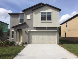 Photo of 13439 Marble Sands Court, HUDSON, FL 34669 (MLS # T3213777)