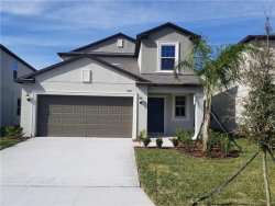 Photo of 13475 Marble Sands Court, HUDSON, FL 34669 (MLS # T3213782)