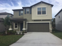 Photo of 13461 Marble Sands Court, HUDSON, FL 34669 (MLS # T3213791)