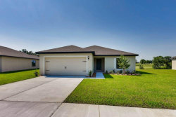Photo of 6948 Crested Orchid Drive, BROOKSVILLE, FL 34602 (MLS # T3214000)
