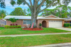 Photo of 12897 Lois Avenue, SEMINOLE, FL 33776 (MLS # T3214019)