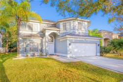 Photo of 18219 Sandy Pointe Drive, TAMPA, FL 33647 (MLS # T3214826)