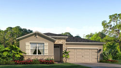 Photo of 12399 Eastpointe Drive, DADE CITY, FL 33525 (MLS # T3215036)