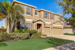 Photo of 154 Star Shell Drive, APOLLO BEACH, FL 33572 (MLS # T3216994)