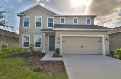 Photo of 11205 Spring Point Circle, RIVERVIEW, FL 33579 (MLS # T3218769)