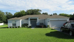 Photo of 10233 Bloomfield Hills Drive, SEFFNER, FL 33584 (MLS # T3219931)