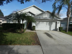 Photo of 2913 Hickory Grove Drive, VALRICO, FL 33596 (MLS # T3220254)