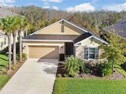 Photo of 27027 Carolina Aster Drive, WESLEY CHAPEL, FL 33544 (MLS # T3220285)
