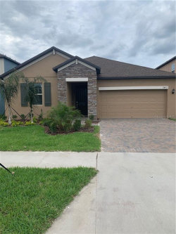 Photo of 11462 Chilly Water Court, RIVERVIEW, FL 33579 (MLS # T3220513)