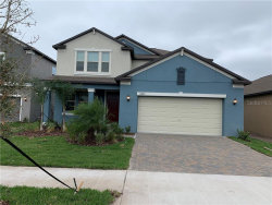 Photo of 11460 Chilly Water Court, RIVERVIEW, FL 33579 (MLS # T3220517)
