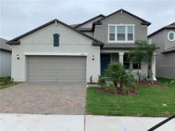 Photo of 11456 Chilly Water Court, RIVERVIEW, FL 33579 (MLS # T3220519)