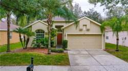 Photo of 19105 Cypress Reach Lane, TAMPA, FL 33647 (MLS # T3220715)