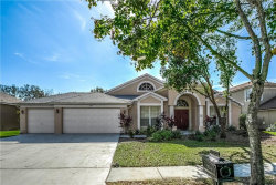 Photo of 9224 Brindlewood Drive, ODESSA, FL 33556 (MLS # T3220746)