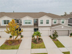 Photo of 10639 Lake Montauk Drive, RIVERVIEW, FL 33578 (MLS # T3220797)