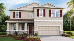 Photo of 8314 Praise Drive, TAMPA, FL 33625 (MLS # T3220995)