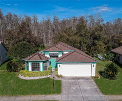Photo of 9645 Conservation Drive, NEW PORT RICHEY, FL 34655 (MLS # T3221112)