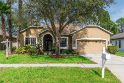 Photo of 3739 Grand Forks Drive, LAND O LAKES, FL 34639 (MLS # T3221460)