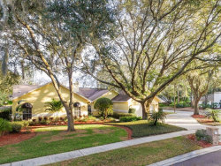 Photo of 18240 Clear Lake Drive, LUTZ, FL 33548 (MLS # T3221990)