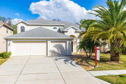 Photo of 3602 Morgans Bluff Court, LAND O LAKES, FL 34639 (MLS # T3222012)