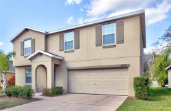 Photo of 10038 Crested Fringe Drive, RIVERVIEW, FL 33578 (MLS # T3223543)