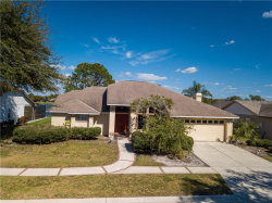 Photo of 1625 Storington Avenue, BRANDON, FL 33511 (MLS # T3224454)