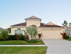 Photo of 11001 Rockledge View Drive, RIVERVIEW, FL 33579 (MLS # T3225394)