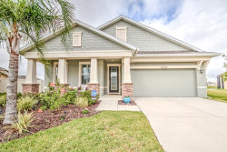 Photo of 11928 Greenchop Place, RIVERVIEW, FL 33579 (MLS # T3225503)