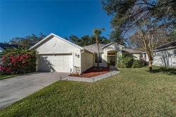 Photo of 6918 Potomac Circle, RIVERVIEW, FL 33578 (MLS # T3226054)