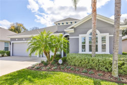 Tiny photo for 1013 Tracy Ann Loop, SEFFNER, FL 33584 (MLS # T3226322)