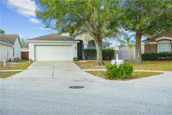 Photo of 12414 Tree Pointe Court, RIVERVIEW, FL 33578 (MLS # T3226610)