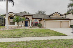 Photo of 15210 Princewood Lane, LAND O LAKES, FL 34638 (MLS # T3226786)