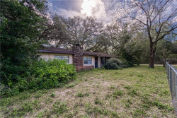 Photo of 13065 Morris Bridge Road, THONOTOSASSA, FL 33592 (MLS # T3227026)