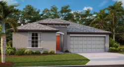Photo of 5453 Rainwood Meadows Drive, APOLLO BEACH, FL 33572 (MLS # T3227569)