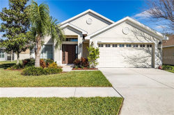 Photo of 9650 Jaybird Lane, LAND O LAKES, FL 34638 (MLS # T3228319)
