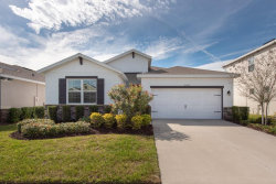 Photo of 6320 Heirloom Place, APOLLO BEACH, FL 33572 (MLS # T3230606)