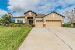 Photo of 13929 Thoroughbred Drive, DADE CITY, FL 33525 (MLS # T3230688)