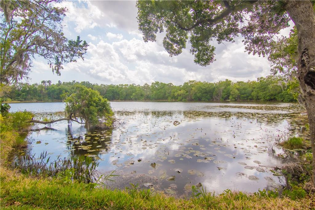 Photo for 732 June Lake Lane, BRANDON, FL 33510 (MLS # T3233797)