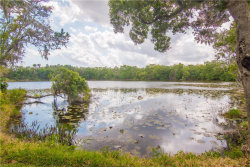 Photo of 732 June Lake Lane, BRANDON, FL 33510 (MLS # T3233797)