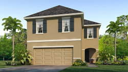 Photo of 8228 Pelican Reed Circle, WESLEY CHAPEL, FL 33545 (MLS # T3233979)