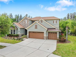 Photo of 19118 Sweet Clover Lane, TAMPA, FL 33647 (MLS # T3234242)