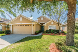 Photo of 3615 Morgans Bluff Court, LAND O LAKES, FL 34639 (MLS # T3234327)