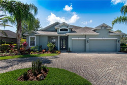 Photo of 12528 Eagles Entry Drive, ODESSA, FL 33556 (MLS # T3234415)