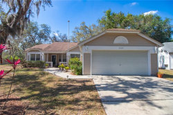 Photo of 3133 Emerson Place, PLANT CITY, FL 33566 (MLS # T3234446)